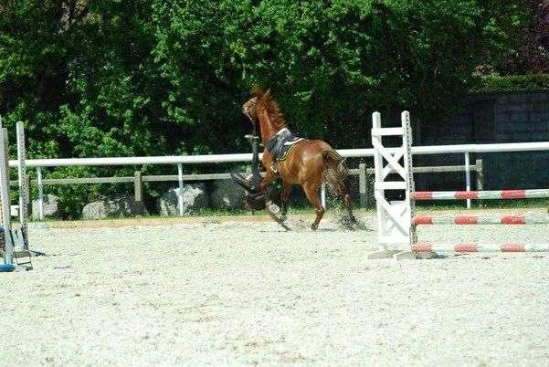 Chute à cheval bizarre