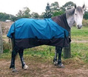 couvertures pour chevaux