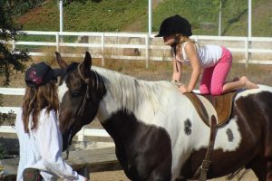 premier cours d'équitation