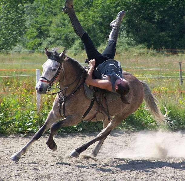 figure de voltige cosaque