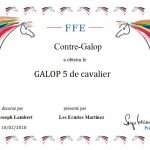 Galop 5 : Le guide complet