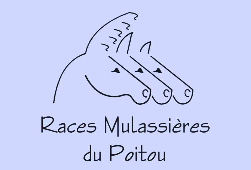 Associations nationales de race