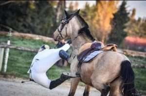 Chutes à cheval